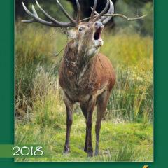 Kalendarz wieloplanszowy Świat polowań - okładka
