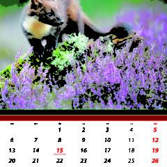 Kalendarz wieloplanszowy Świat polowań - przykładowa strona