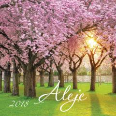 Kalendarz wieloplanszowy Aleje - okładka