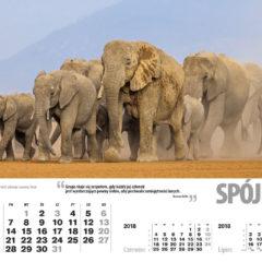 Kalendarz wieloplanszowy Ethos (5)