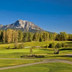 Kalendarz wieloplanszowy Golf (12)
