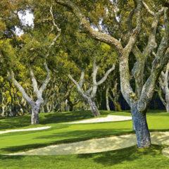Kalendarz wieloplanszowy Golf (2)