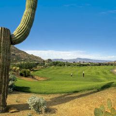 Kalendarz wieloplanszowy Golf (5)