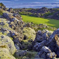 Kalendarz wieloplanszowy Golf (7)
