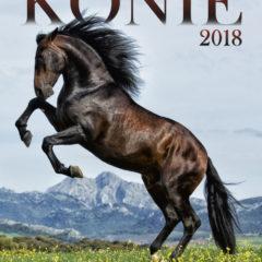Kalendarz wieloplanszowy Konie - okładka