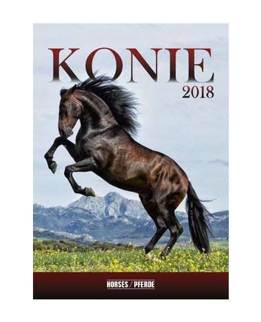 Kalendarz wieloplanszowy Konie