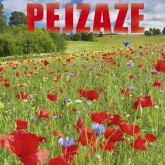 Kalendarz wieloplanszowy Polskie pejzaże - okładka