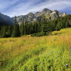 Kalendarz wieloplanszowy Tatry w panoramach (6)