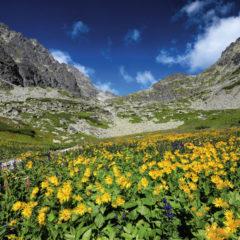 Kalendarz wieloplanszowy Tatry w panoramach (7)