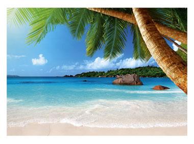 kalendarz trójdzielny Tropikalna plaża