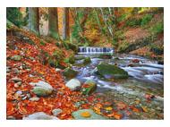 kalendarze trójdzielne Górski strumień