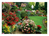 kalendarze trójdzielne Kwiecisty ogród
