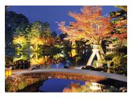 kalendarze trójdzielne Ogród nocą