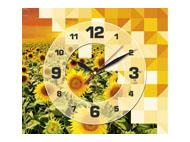 kalendarze trójdzielne z zegarem Słoneczniki