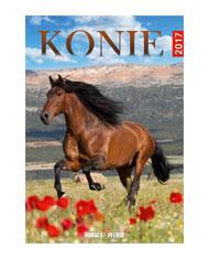 kalendarze-wieloplanszowe_0000s_0020_konie