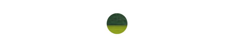 zielony-01